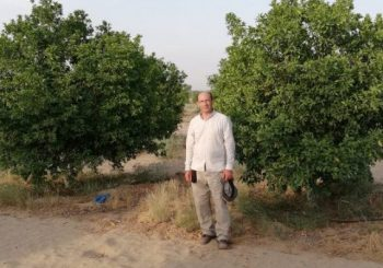 سیستم آبیاری قطره ای در کشاورزی پاکستان