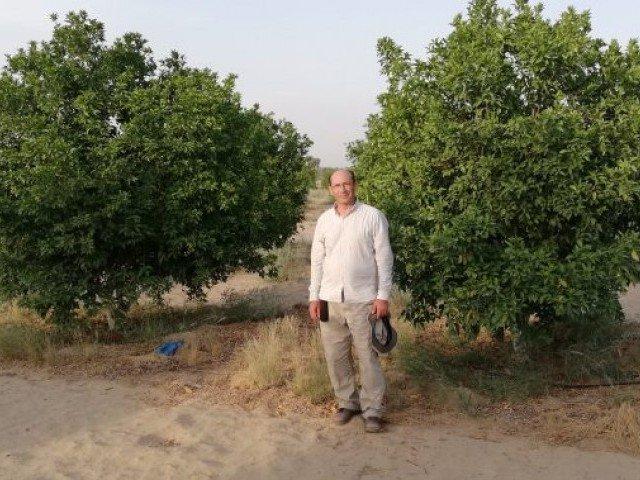 """معرفی سیستم آبیاری قطره ای """"محاسبه شده"""" برای سبز کردن تپه های شن و ماسه توسط کشاورز پاکستانی"""