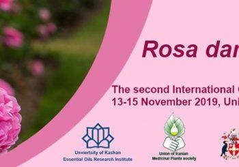 Rosa damacsena 2019
