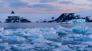Pakistan Antarctic Program